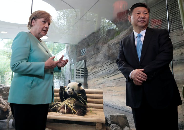 Pandanomics is a grey area, but to us the value of giant pandas is black and white