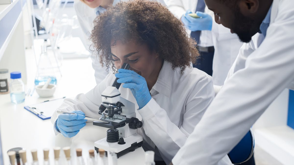 African science needs more leaders. Here's how to develop them