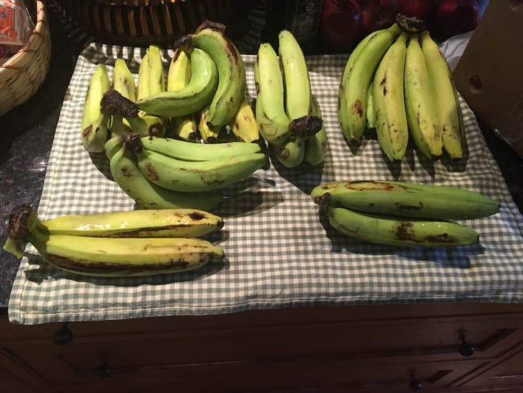You might never be quite sure what to expect when you peeled a banana