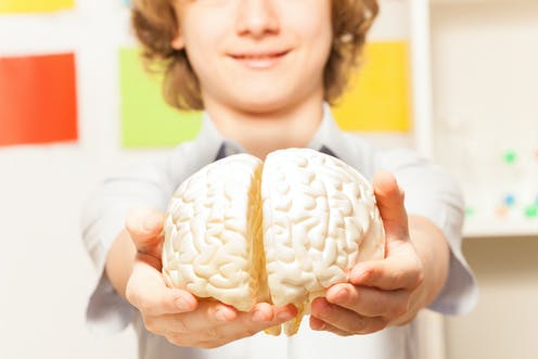 The Heart Of Matter Adolescent Brain >> David Gillespie S Teen Brain A Valid Argument Let Down By