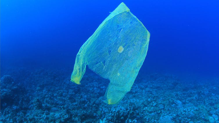 Not long before there's more plastic than fish in the sea. MichaelisScientists