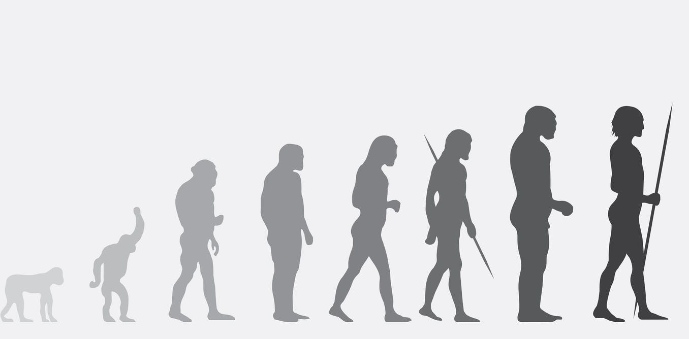 It's time we stopped human evolution – geneticist