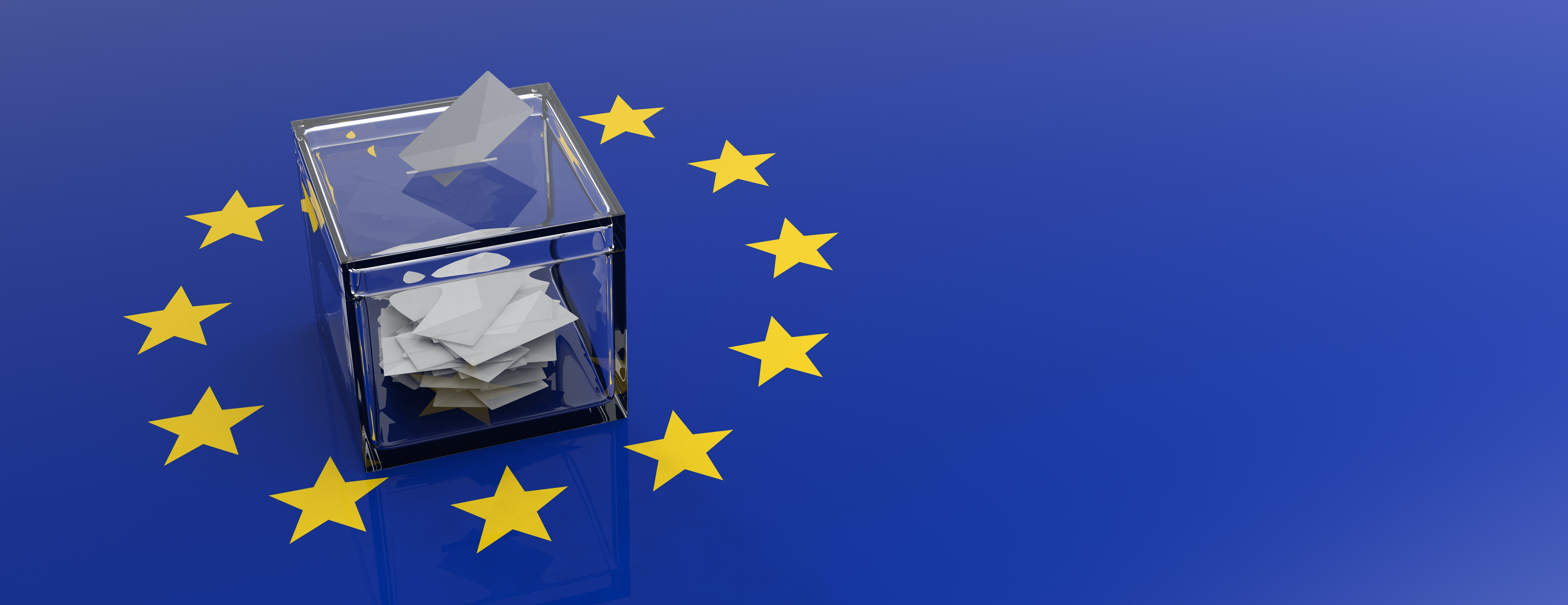 European elections guide: what's actually on the ballot paper?