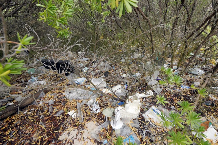 Will the discovery of another plastic-trashed island finally spark meaningful change?