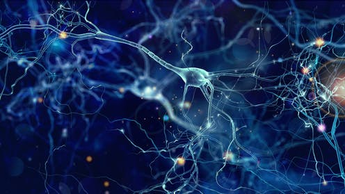 Study Pinpoints Autism Linked Protein >> New Autism Research On Single Neurons Suggests Signaling Problems In