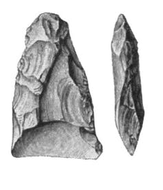 An ancient Swedish flake axe made