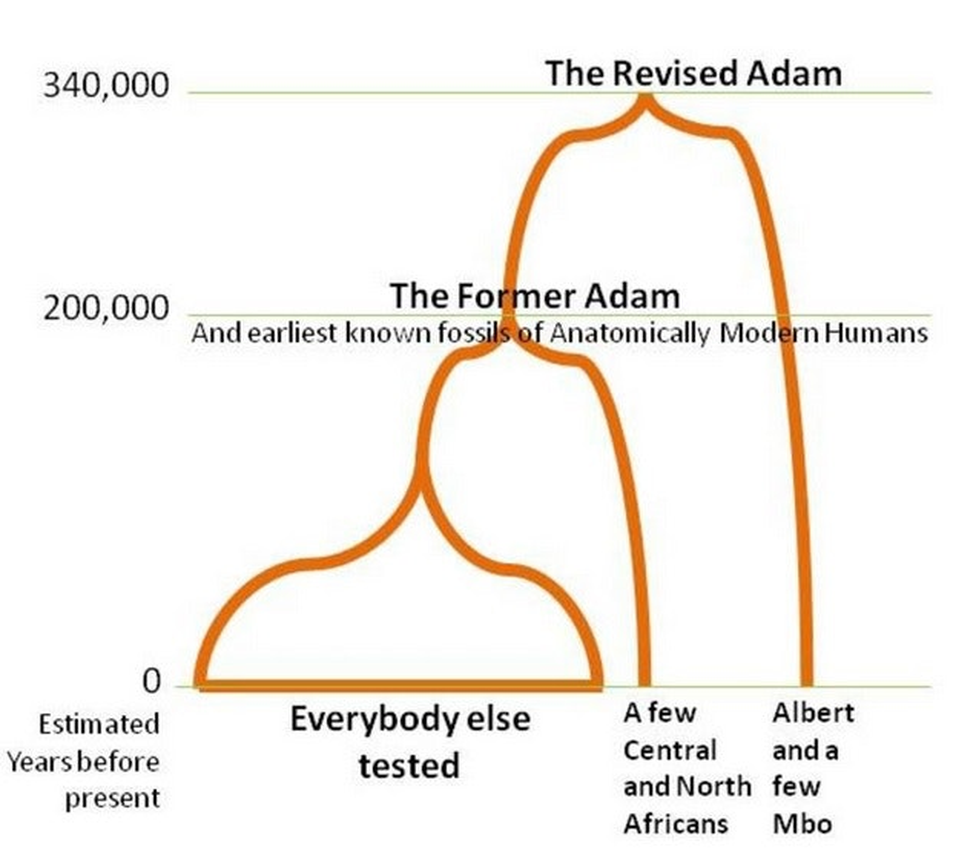 albert and adam rewrite the story of human origins