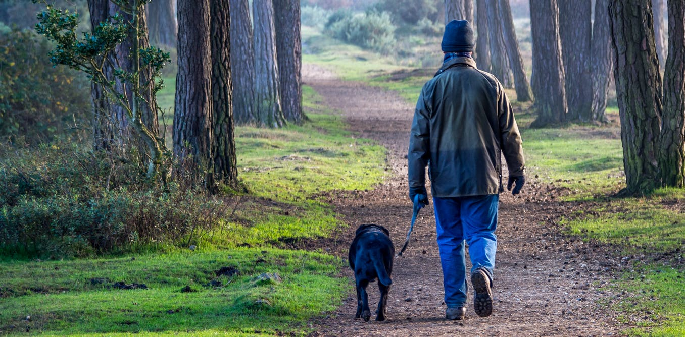 Spending two hours a week in nature is linked to better health and well-being