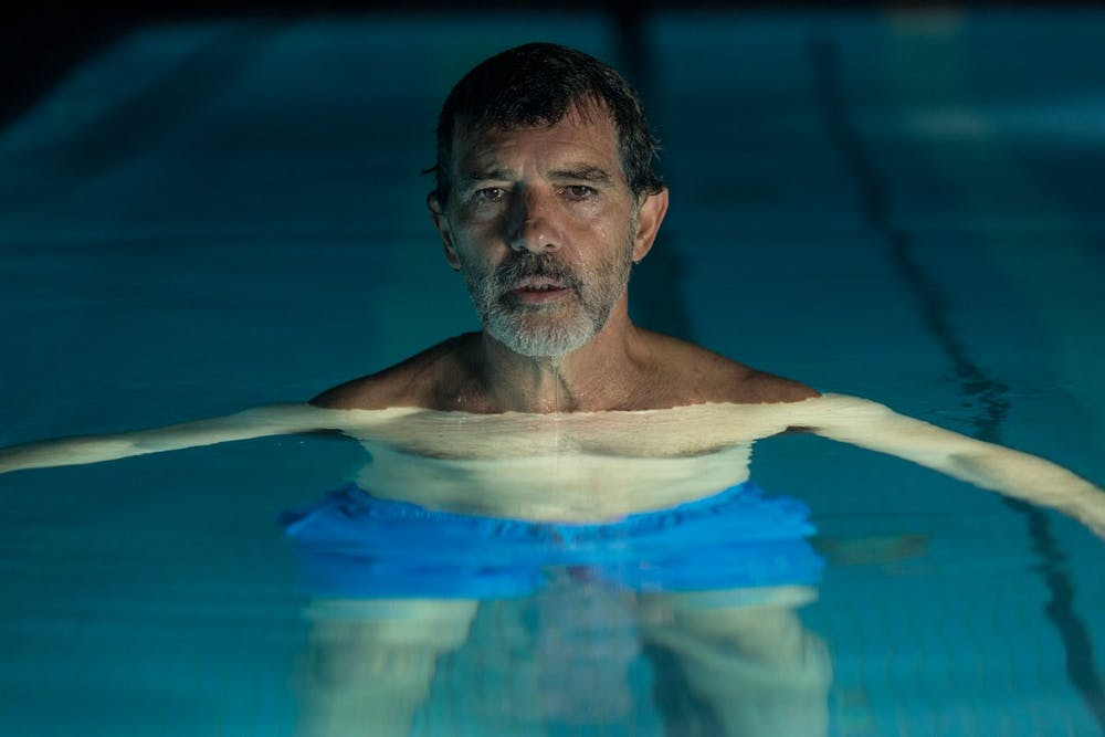 Five films not to miss from the 2019 Sydney Film Festival
