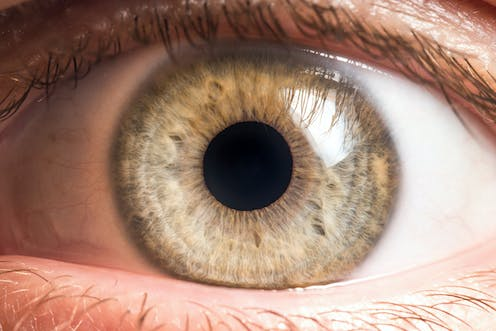 Bacteria live on our eyeballs -- and understanding their