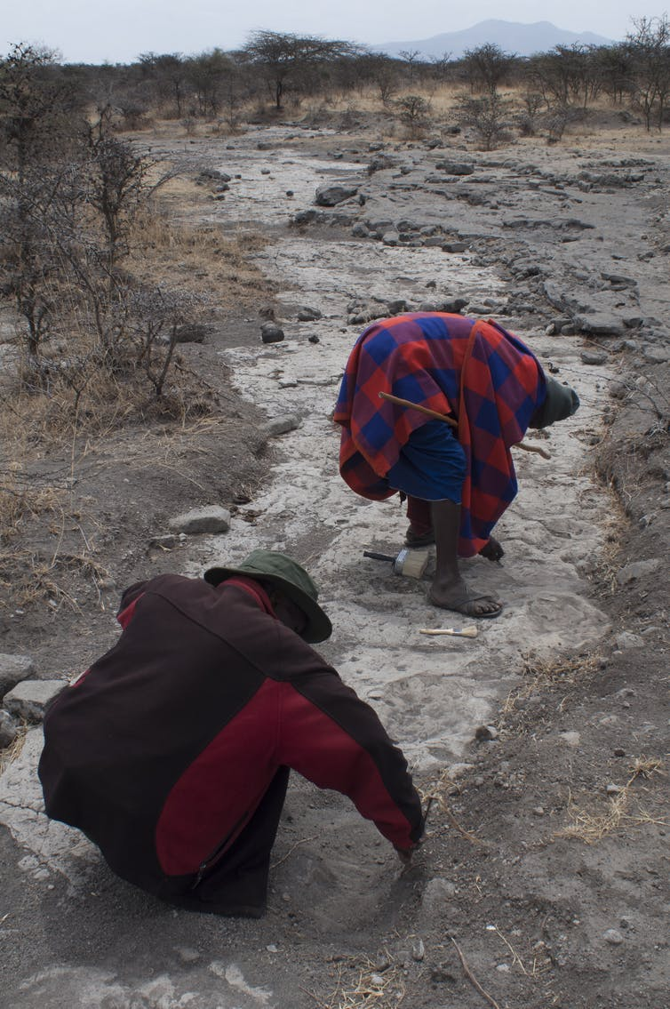 file 20190625 81758 o3oa9v.jpg?ixlib=rb 1.1 - The Maasai legend behind ancient hominin footprints in Tanzania