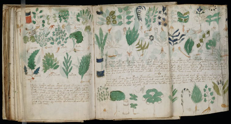 Many think the book is a compendium of herbal medicines