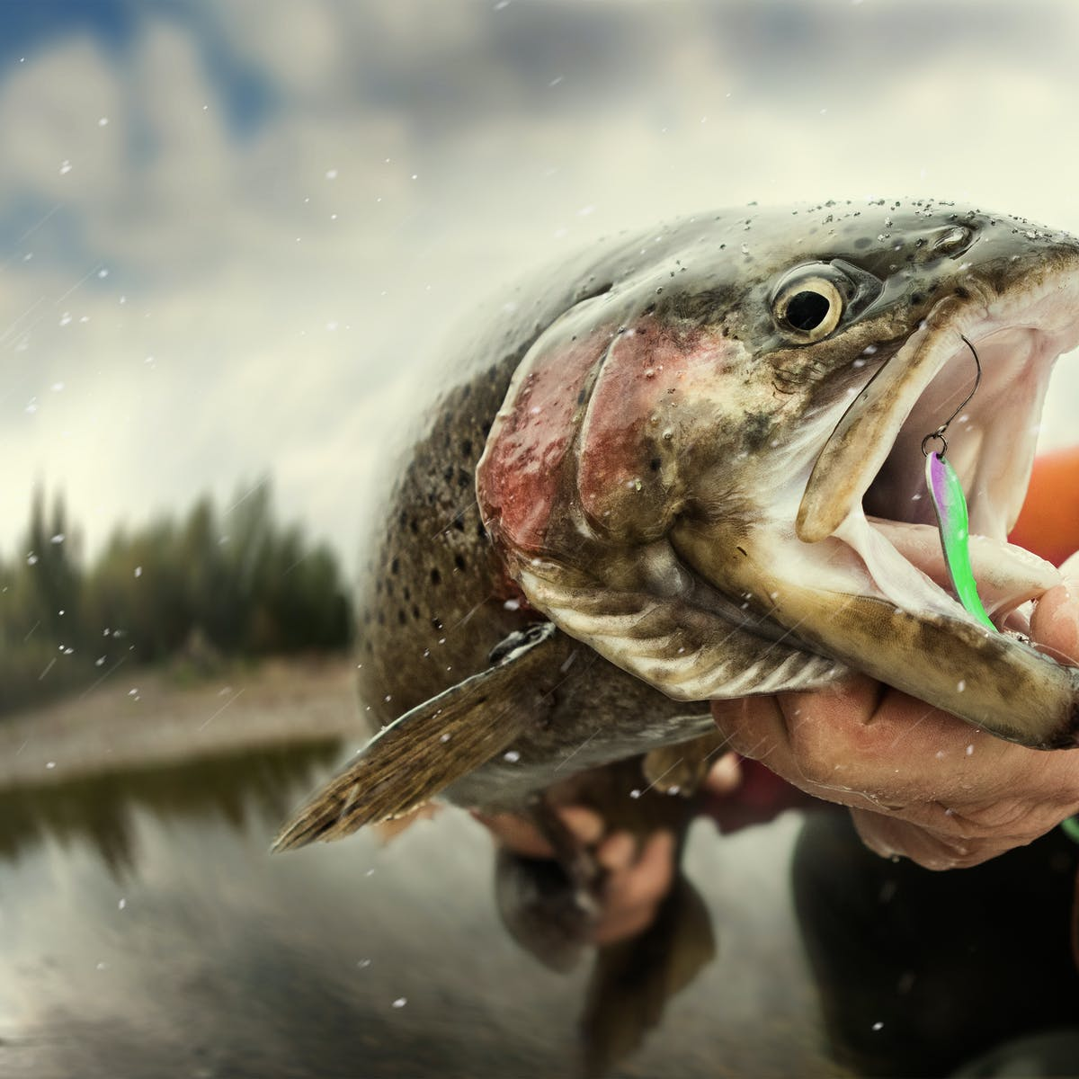 Catch me if you can! How anglers are changing the catchability of fish