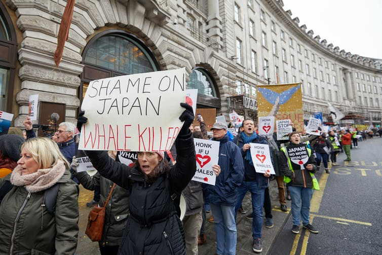 Protesters march in London to demonstrate against Japan's decision to resume commercial whaling, January 2019.