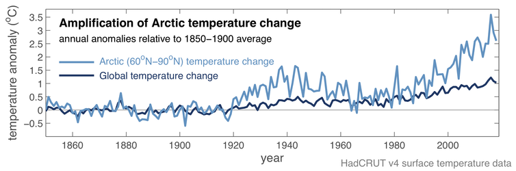 Chart showing amplification of climate change in the Arctic