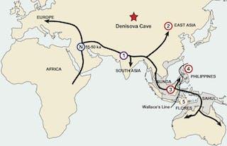 50 000 Tahun Lalu Asia Tenggara Dipadati Oleh Banyak Kelompok Manusia Purba Tapi Hanya Spesies Kita Yang Selamat