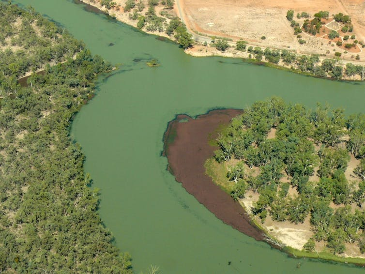 The Murray-Darling Basin scandal: economists have seen it coming for decades