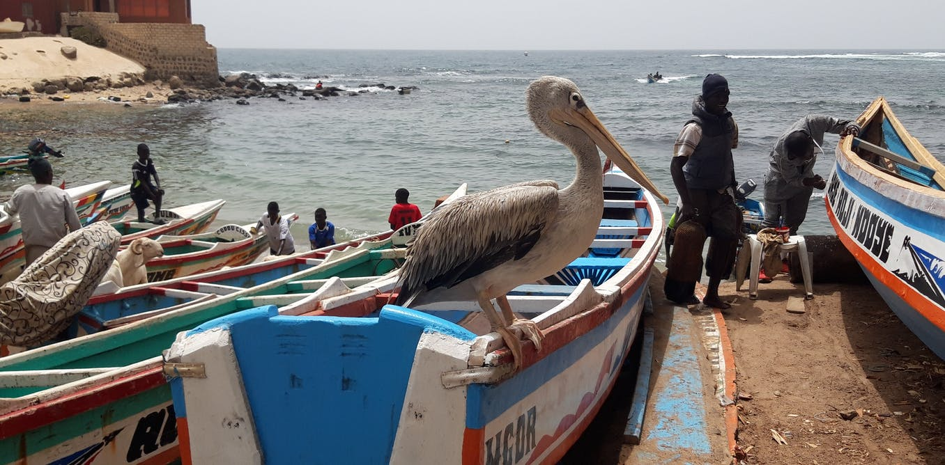 Carnet de voyage : regards croisés sur les makers et l'entrepreneuriat au Sénégal