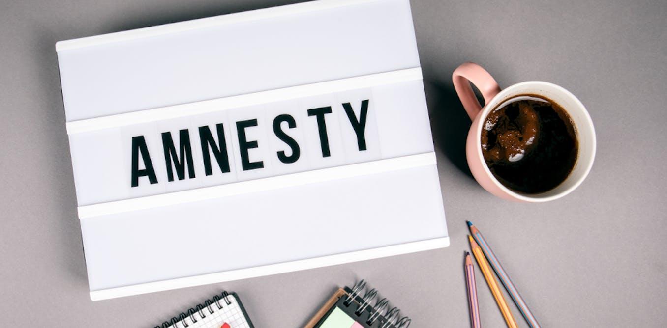 Analisis di balik kontroversi pemberian amnesti Jokowi kepada Baiq Nuril: Indonesia butuh UU Amnesti yang baru