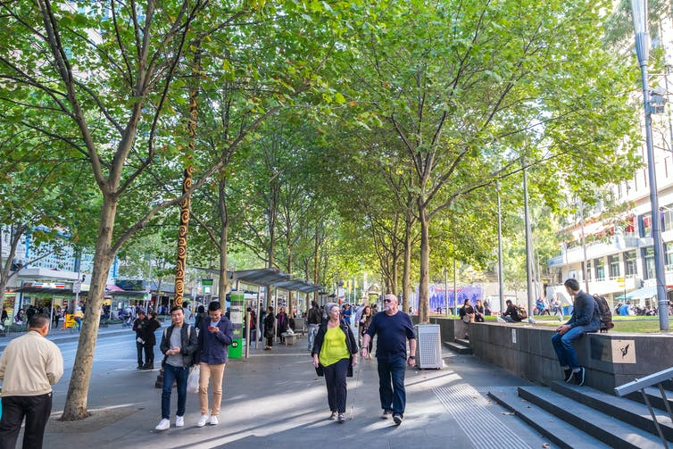 Increasing tree cover may be like a 'superfood' for community mental health
