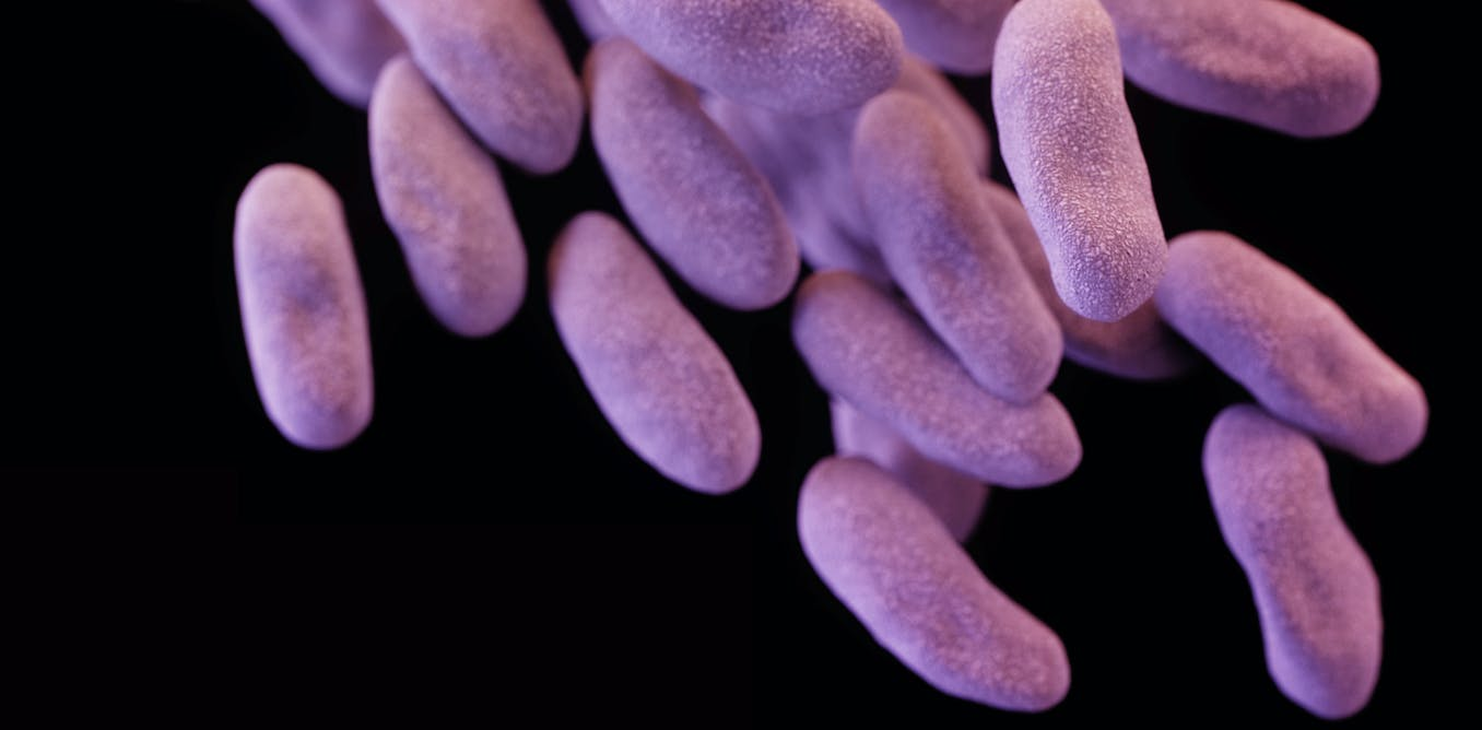 An ambitious plan to stop the rise of superbugs