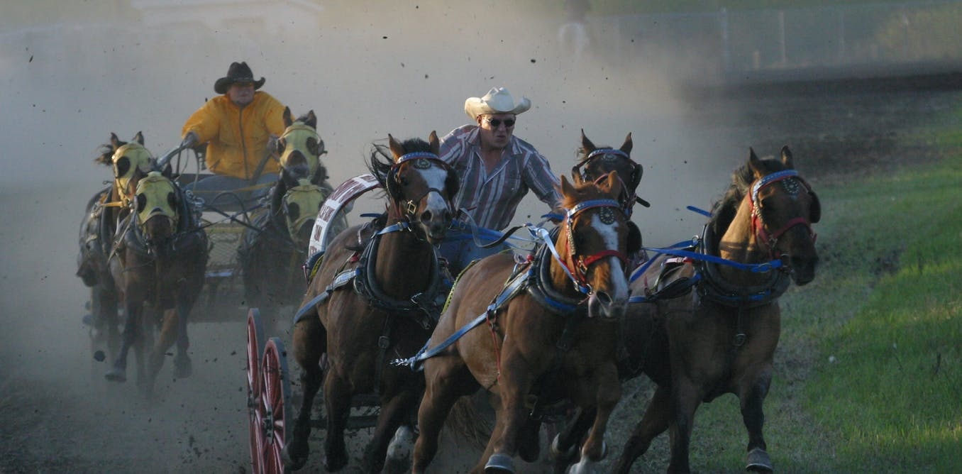 Rodeo is a theatre of violence and danger — and it's not going anywhere