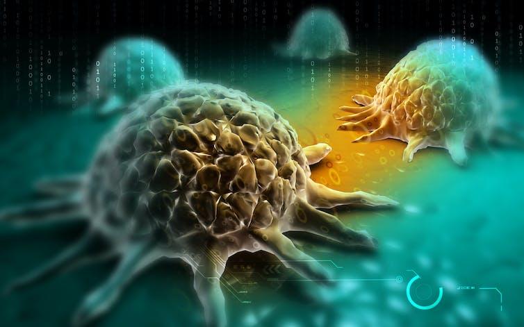 células cáncer