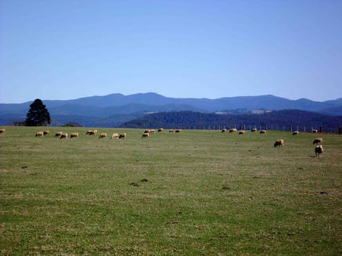 Australia urgently needs real sustainable agriculture policy