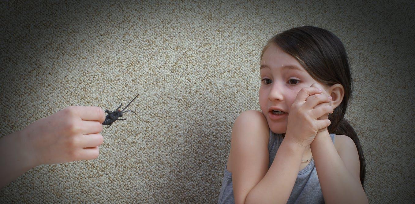 Curious Kids: where do phobias come from?