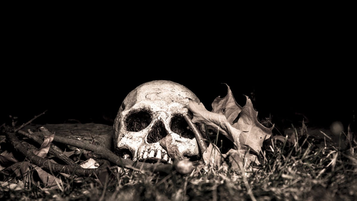How Do We Identify Human Remains