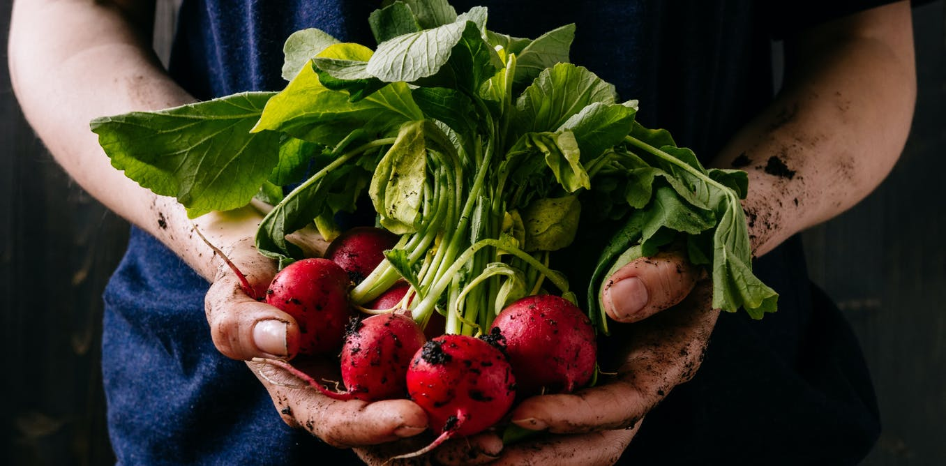 Organic food health benefits have been hard to assess, but that could change
