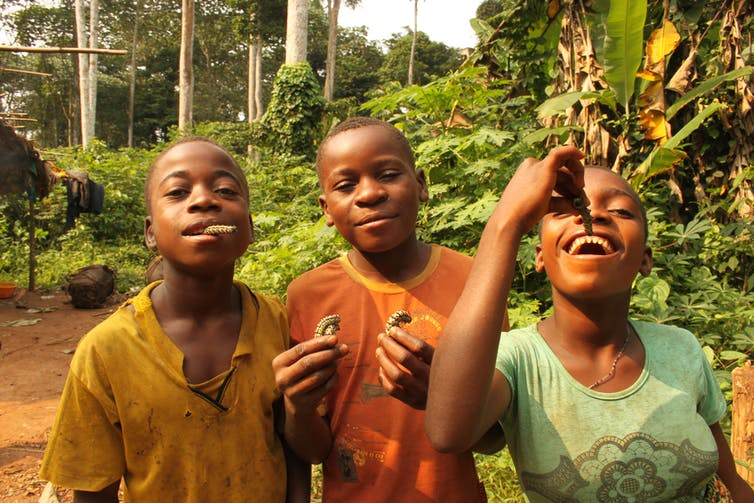 Modern Hunter Gatherer Children Could Tell Us How Human Culture Evolved And Inspire New Ways Of Teaching