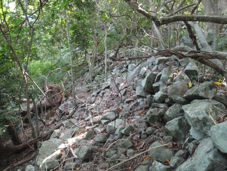 Forgotten citadels: Fiji's ancient hill forts and what we can learn from them