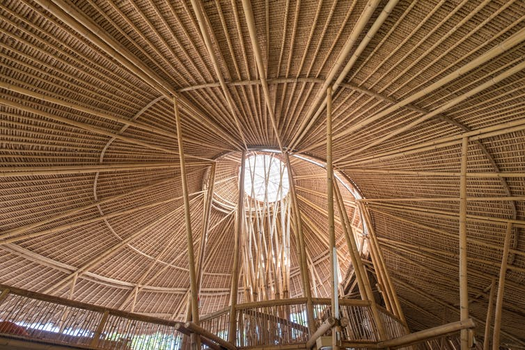 bamboo architectural forms