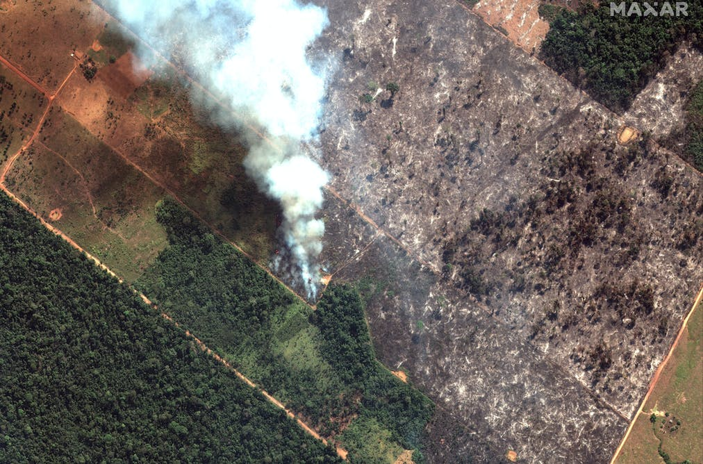 Amazon fires: deforestation has a devastating heating impact
