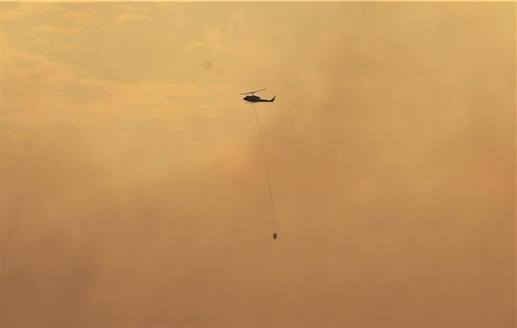 Pasukan pemadam kebakaran hutan departemen kehutanan, Manggala Agni, berusaha memadamkan api.