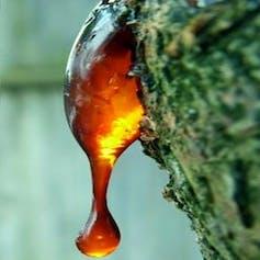 La myrrhe, une résine naturelle.