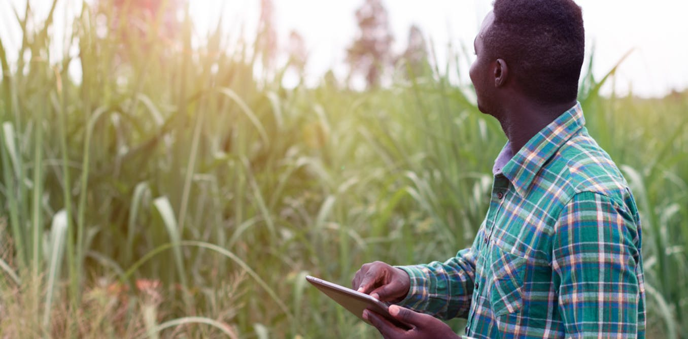 Pasha 34: How digital technologies can help farmers in Africa