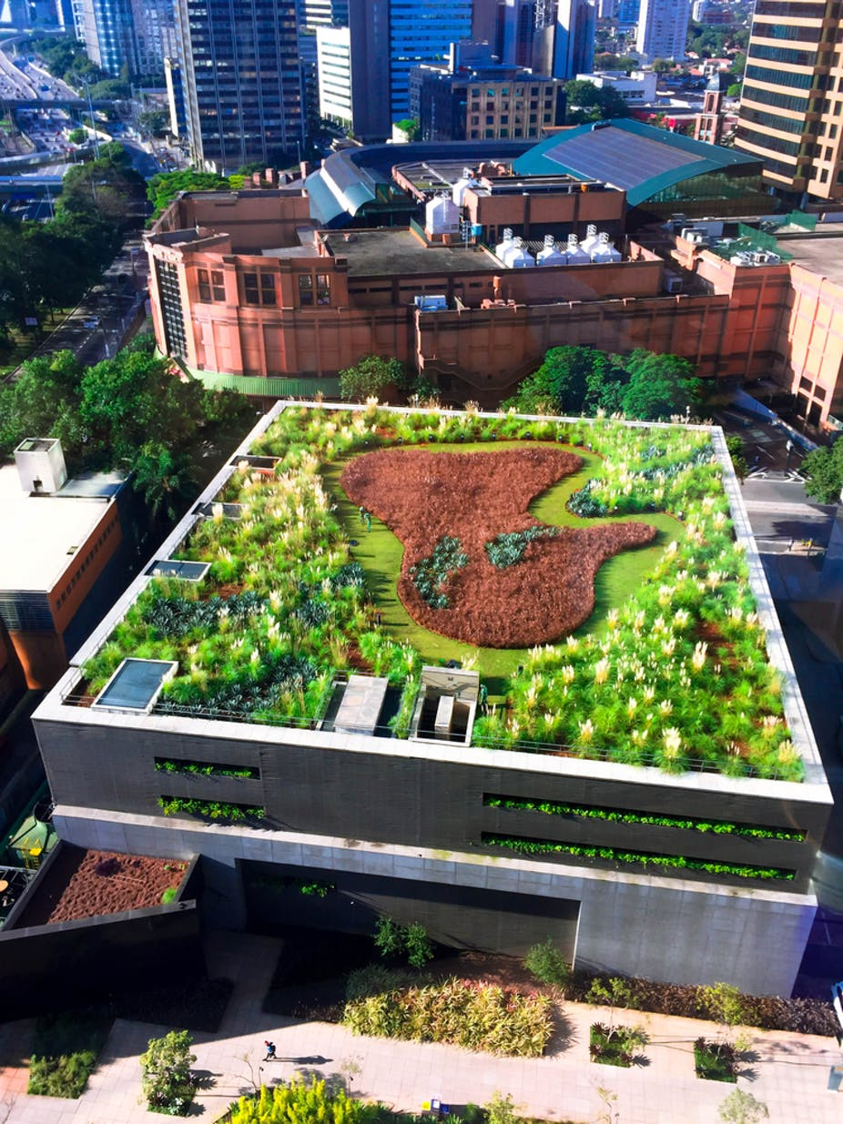 How Buildings In Johannesburg Could Benefit From Green Roofs