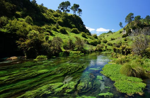 New Zealand launches plan to revive the health of lakes and rivers
