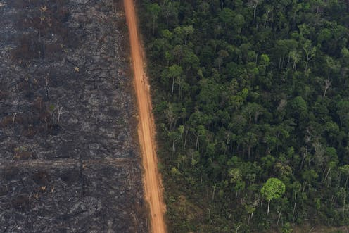 In Brazil's rainforests, the worst fires are likely still to