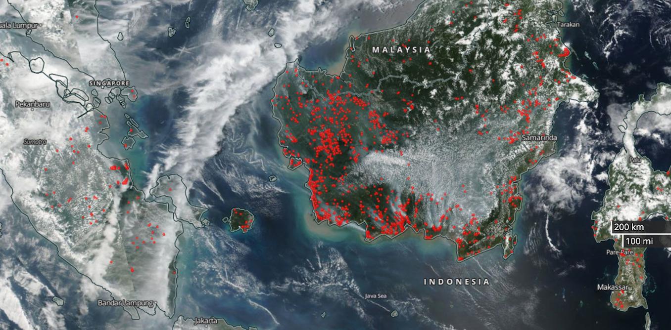 Peneliti AS ciptakan alat untuk deteksi kabut asap akibat kebakaran hutan di Indonesia