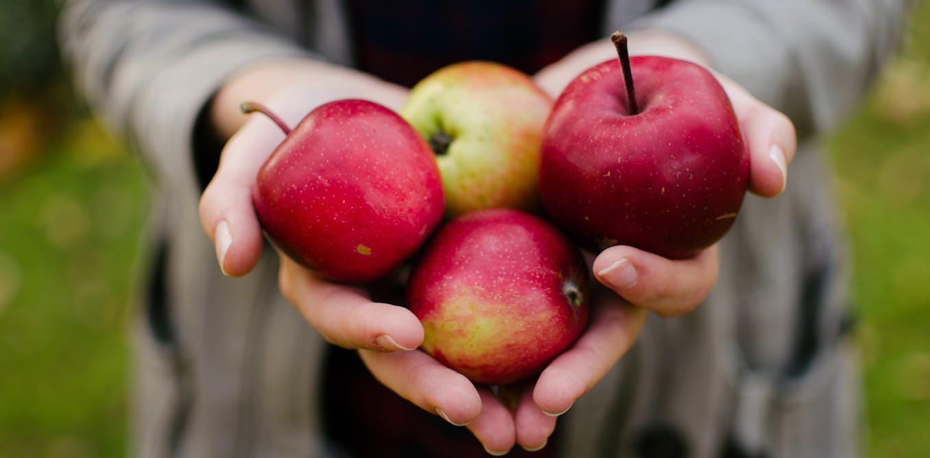 Connaissez-vous l'effet matrice des aliments?