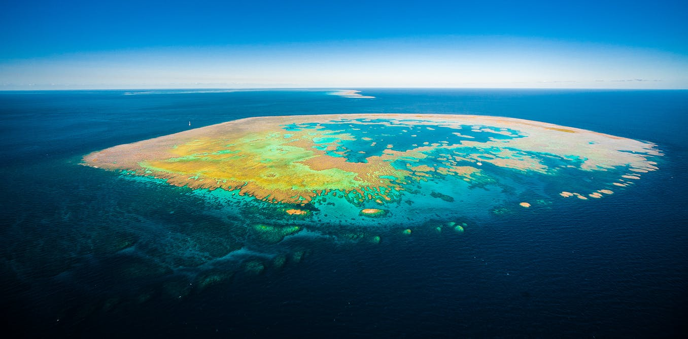 The Great Barrier Reef is in trouble. There are a whopping 45 reasons why