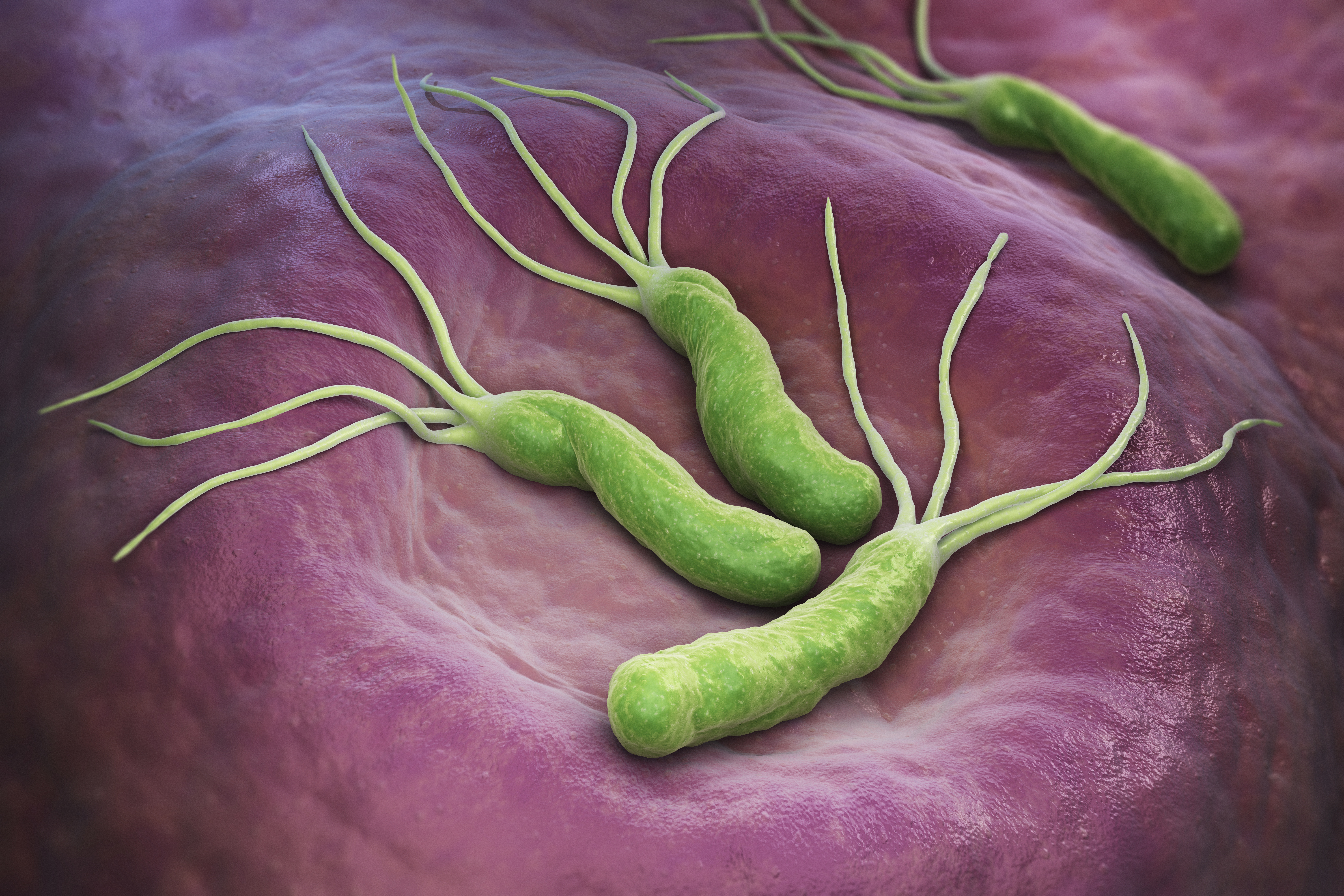 A Stomach Bacteria Threatens Nairobi's Residents. What Can Be Done to Stop It