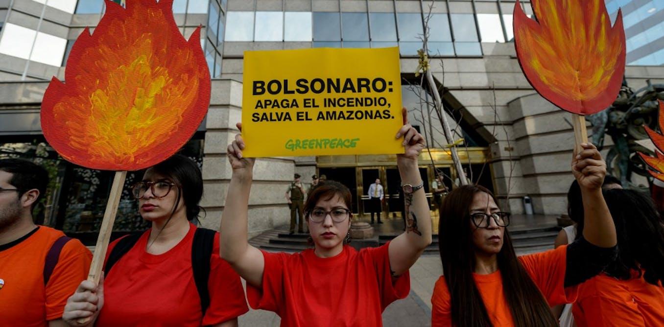 La déforestation au Brésil, une stratégie économique perdante ?