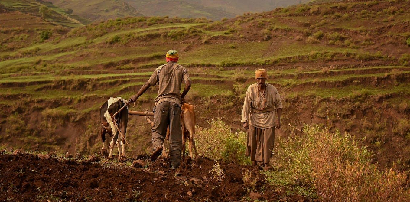 Ethiopia is making maps to help improve soil health