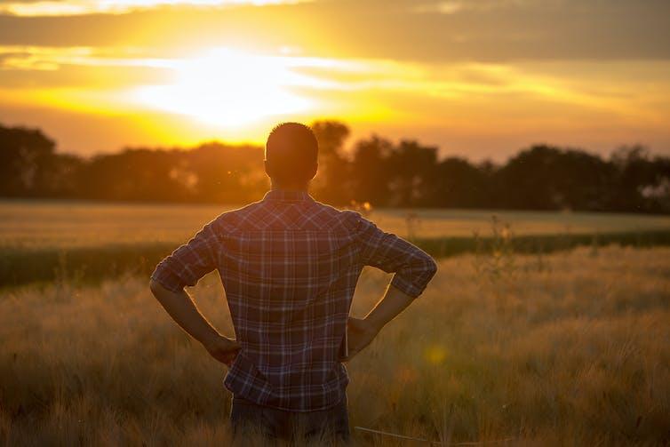Farmer looks onto his farm