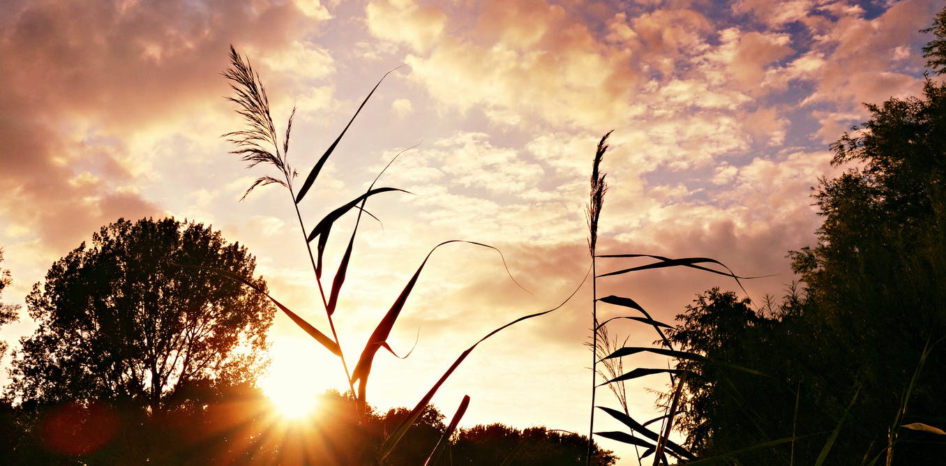 Climate change deniers are dangerous - they don't deserve a place on our site - The Conversation AU