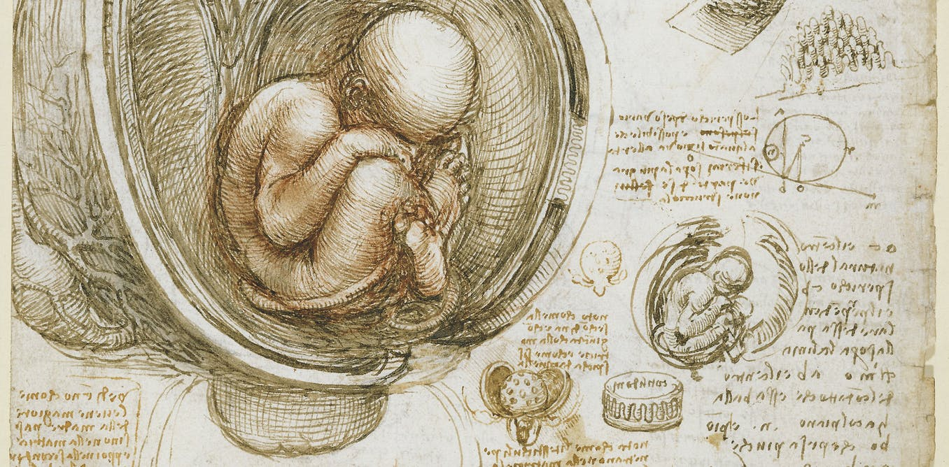 L'embryon humain est-il une personne ?